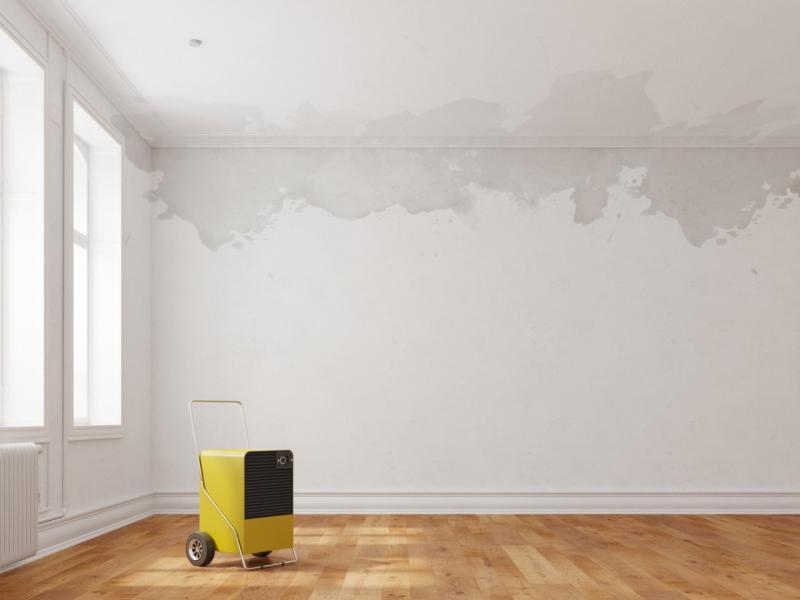 pokój zmokrą ścianą
