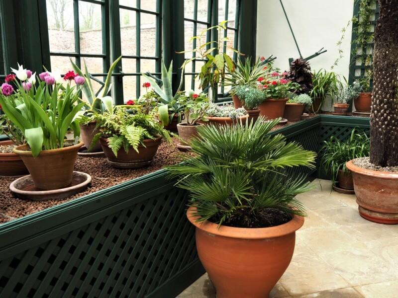 Ogród Zimowy Cena Budowy Koszt Utrzymania I Wybór Roślin Blog