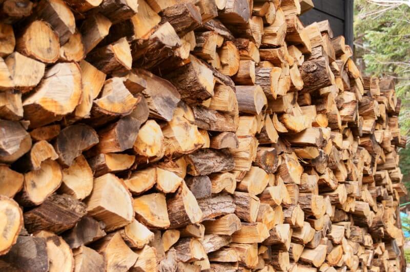 drewno wdrewutni