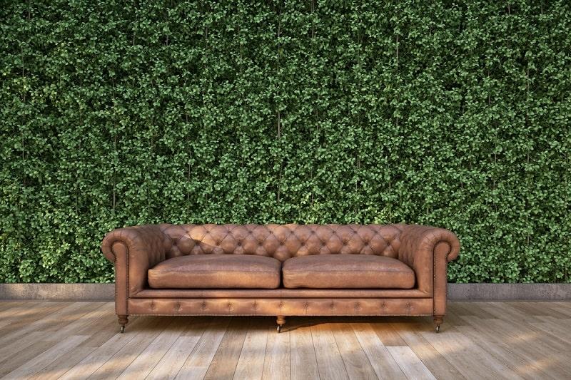 ściana pokryta roślinnością
