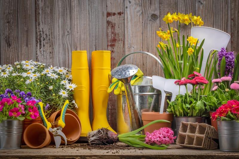 prace ogrodowe na wiosnę