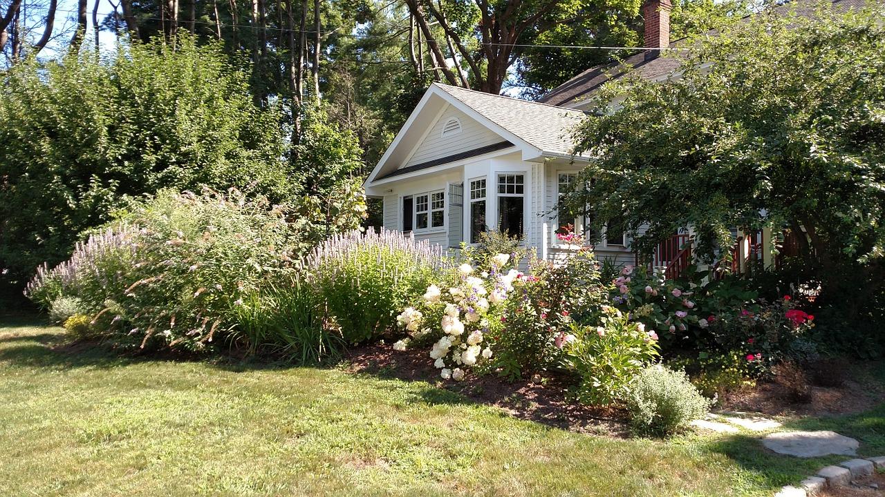 kwiaty przed domem