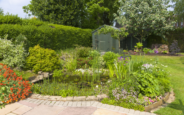 Przydomowy ogród, projekt