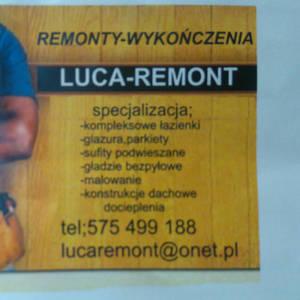 Luca luca